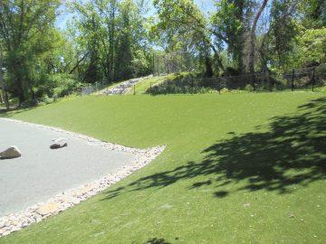 Takoma Dog Park After STI