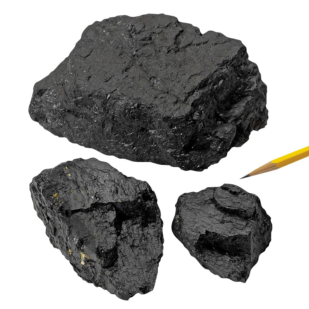 Sedimentary Rocks Bituminous Coal 1 Kg