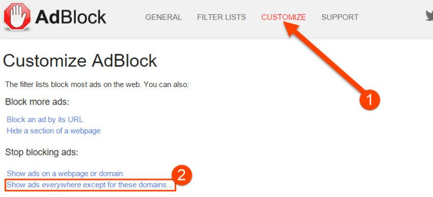 Go to Adblock Customization