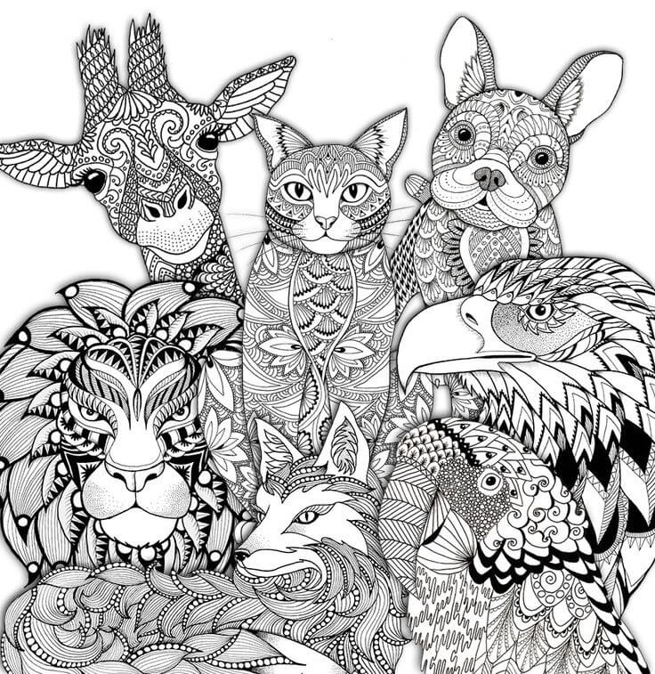 Adult coloring pages animals | printable colouring pages for adults animals