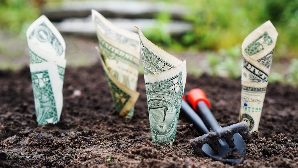 fintech-money-capital-seed-funding