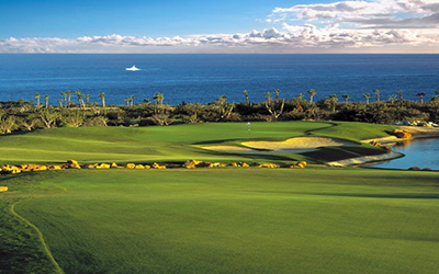Best Golf Courses in Los Cabos  Mexico   TeeOff com Cabo Del Sol