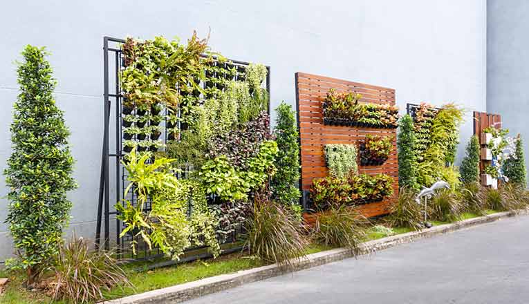 Vertical Gardens Are In Vogue