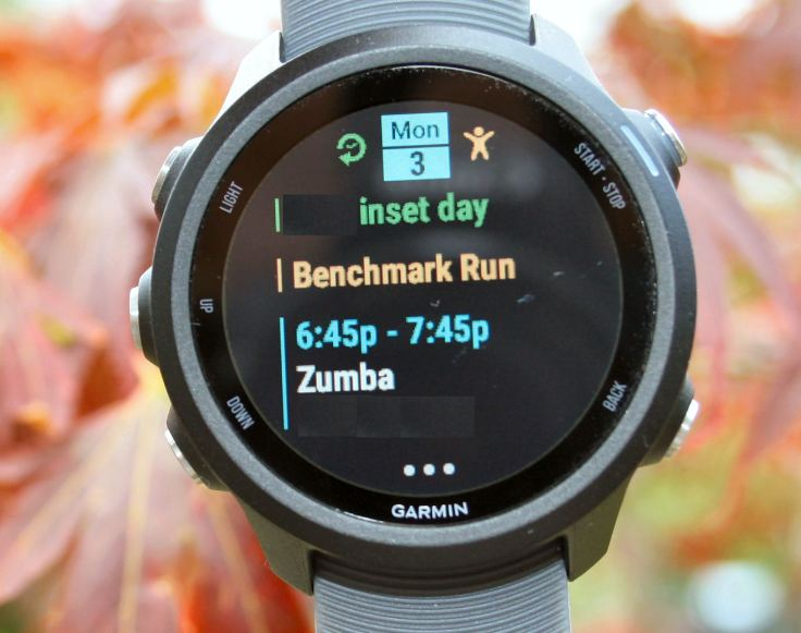 Garmin 245 Review Forerunner 245M Music