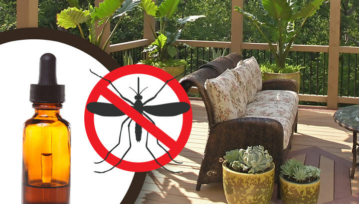 keep mosquitoes away from your patio