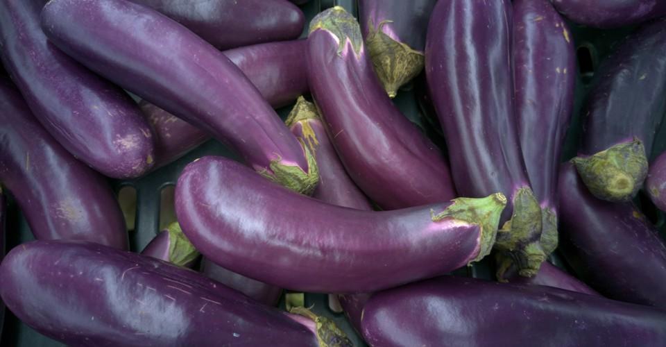 Free the Eggplant