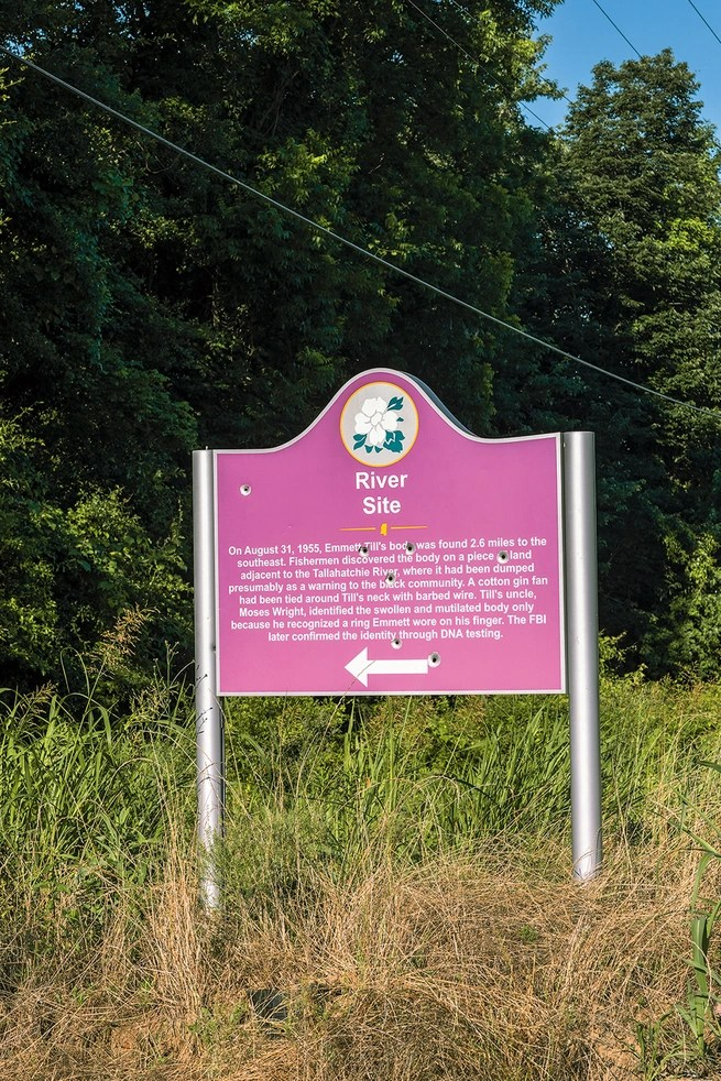 """Pink road sign """"River Site,"""" pockmarked with bullet holes, in tall grass"""