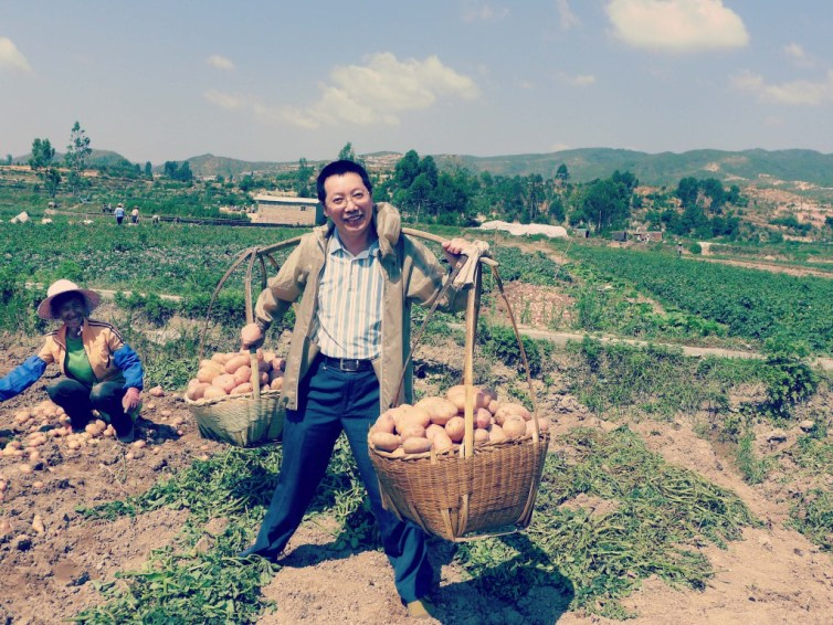 One-third of the world's potatoes are harvested in China. Credit: International Potato Center