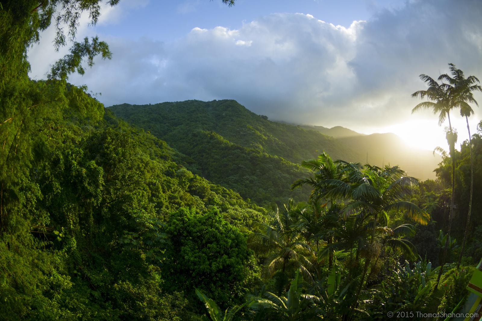 La Map Nacional Puerto Parque Cordillera El Rico Central El Yunque