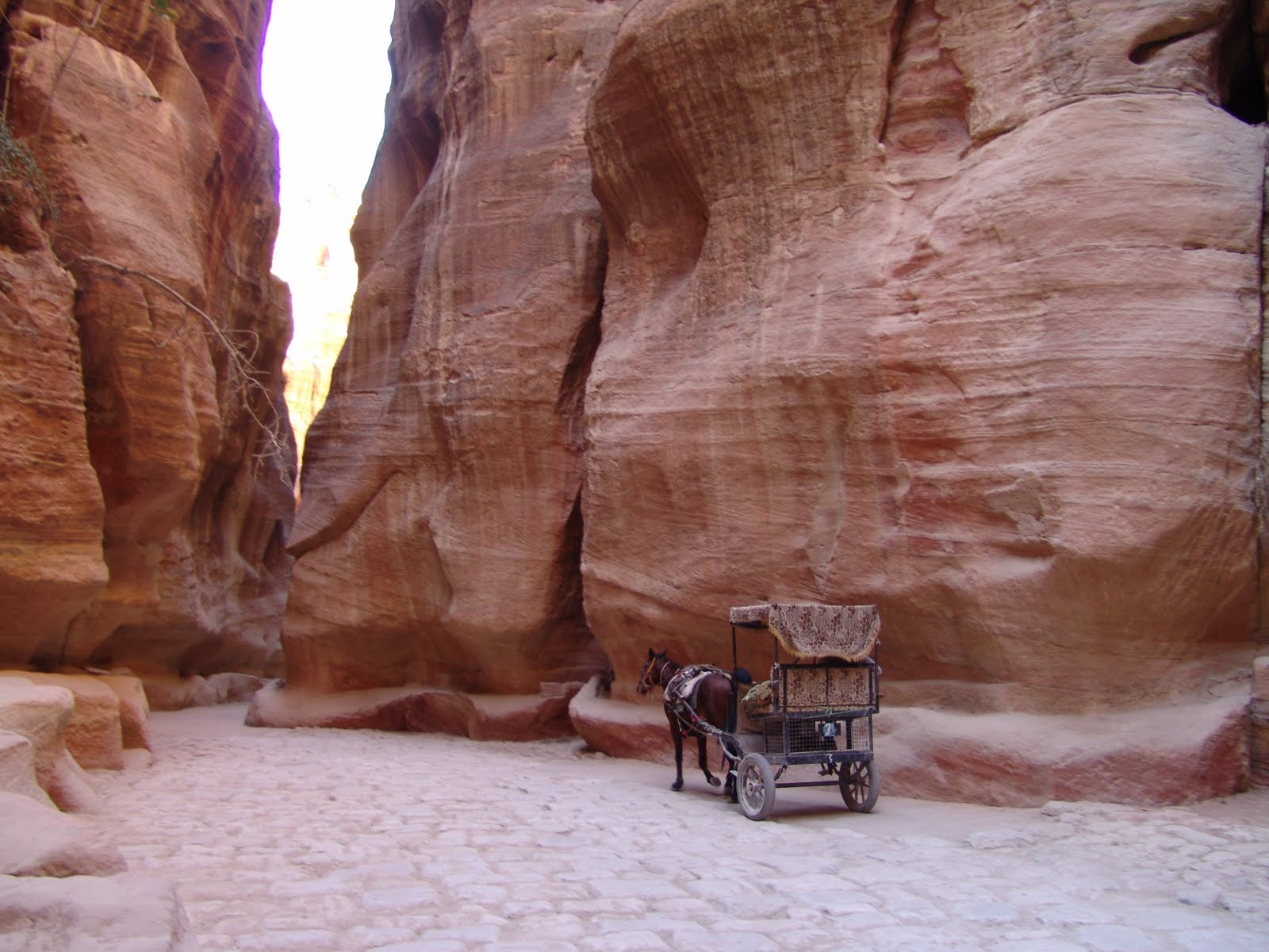 Top 10 Things To See And Do In Petra Jordan