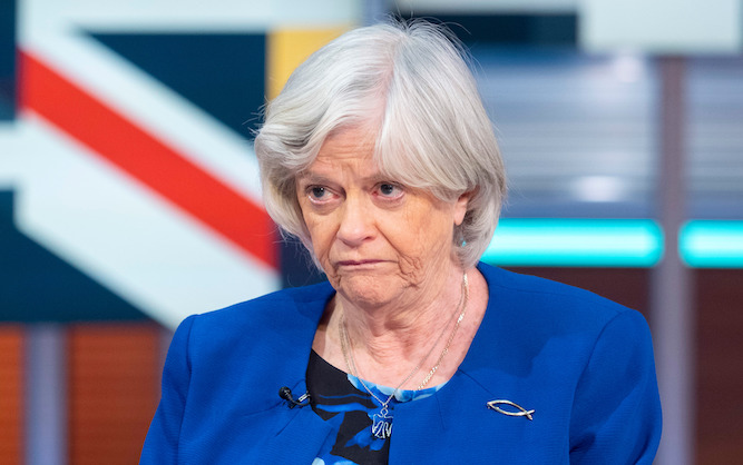 'Project Fear' vindicated as Brexit leads to return of Ann Widdecombe