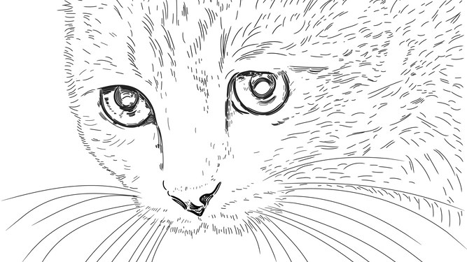 Detailed cat doodle on Post-it note biggest achievement of woman's working day