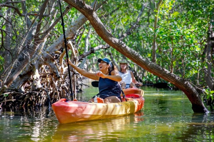 A woman wearing a hat smiles as she navigates the mangrove tunnels in an area of water in Sarasota, Fla.