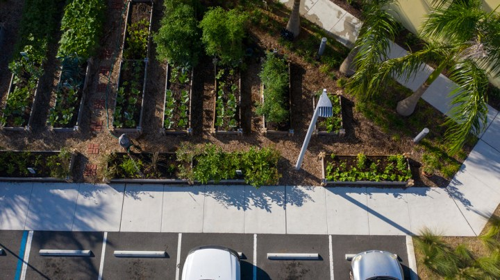 This photo shows an aerial photo of raised garden beds in the parking lot of a building.
