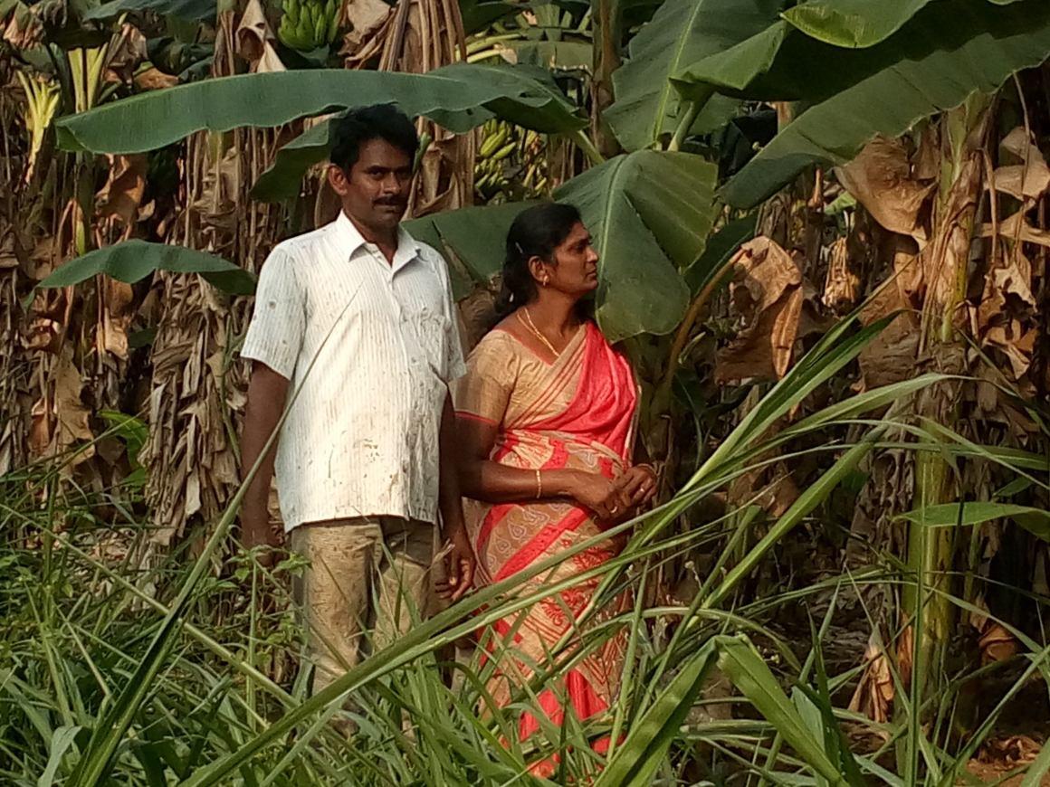 P. Tamilselvi on her farm. Credit: M.J. Prabu