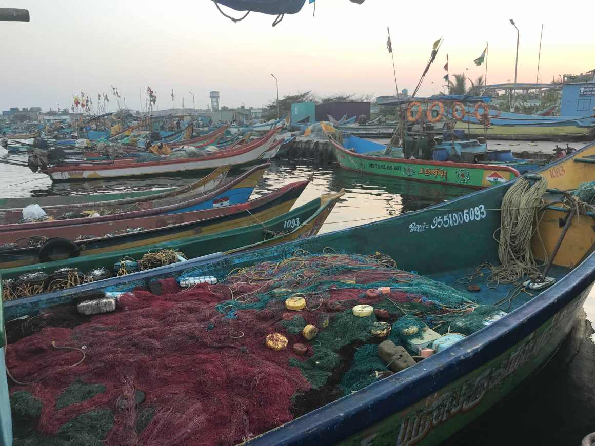 Small boats docked at Kasimedu. Credit: Supriya Vohra