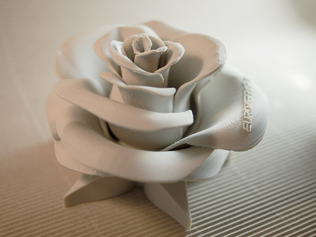 Rose Real Flower By EuroreprapEU Thingiverse