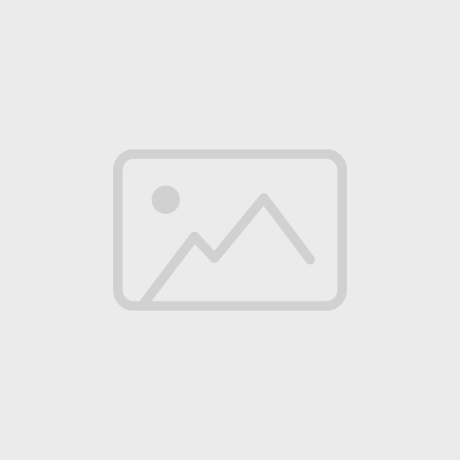 Animal Cell Labeling Quiz   By SnelsonBiology Surrounds the cell