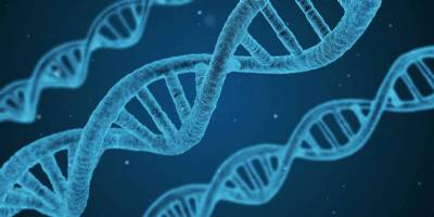 Death will be 'optional' and ageing 'curable' by 2045, say genetic engineers