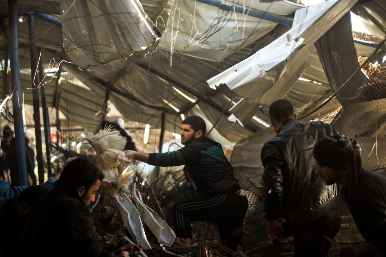 Palestinians inspect the damage to a chicken house outside Gaza City on February 7, 2017, following a series of strikes carried out the day before by Israeli forces against the Hamas terrorist group in the Strip in response to a rocket fired from the enclave that hit southern Israel. (Mahmud Hams/AFP)