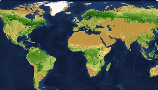 Begini Cara Menghitung Jumlah Pohon di Satu Negara