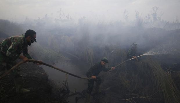 Walhi Desak Pemerintah Tetapkan Bencana Nasional Kabut Asap