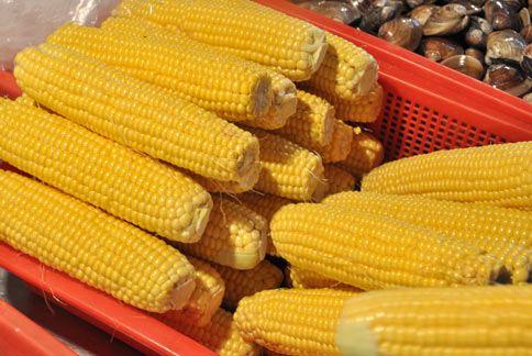 烤玉米一串等於1.3碗飯的熱量。