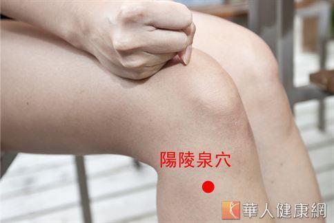 按壓陽陵泉穴有舒緩腿部腫脹、麻木,改善下半身血液循環的效果。