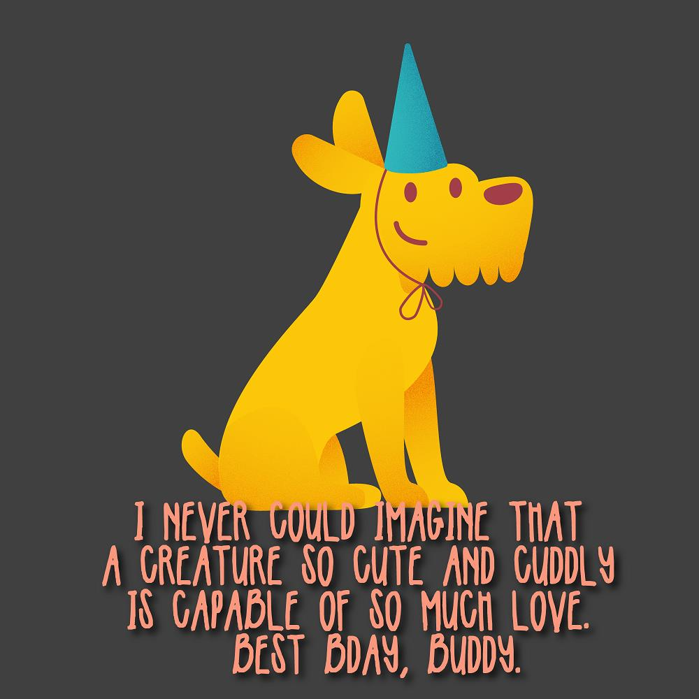 The 200 Birthday Wishes For Dogs With Cute Images Top Happy Birthday Wishes