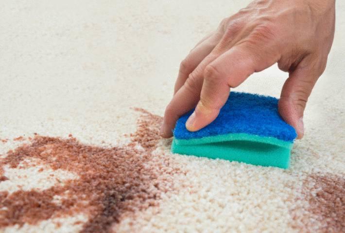 nettoyage tapis 6 conseils et 10