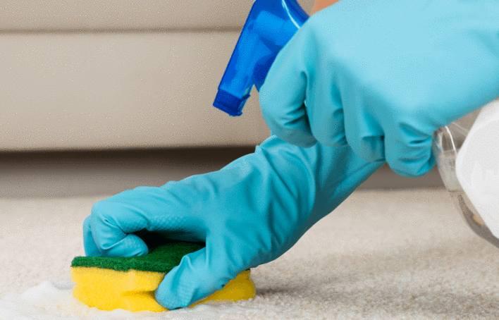 comment nettoyer un tapis shaggy tout