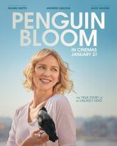 Penguin Bloom Trailer (2021)