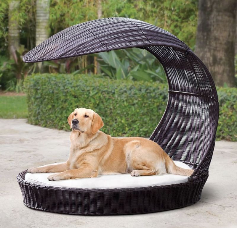 Luxury Outdoor Canine Furniture Dog Lounge