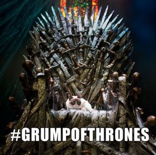 Image result for Game of thrones Cat Memes