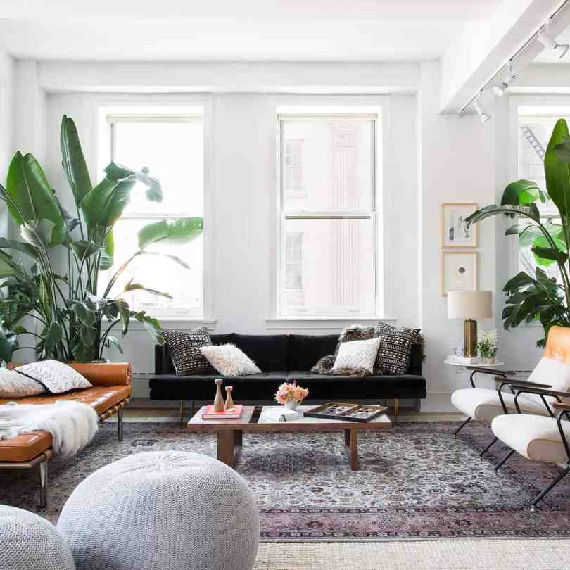 plants in living room Everything You Need To Know About Coastal Décor