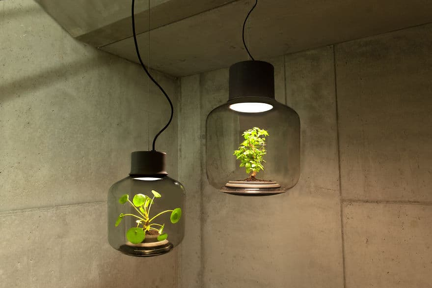 amazing light fixtures with live plants