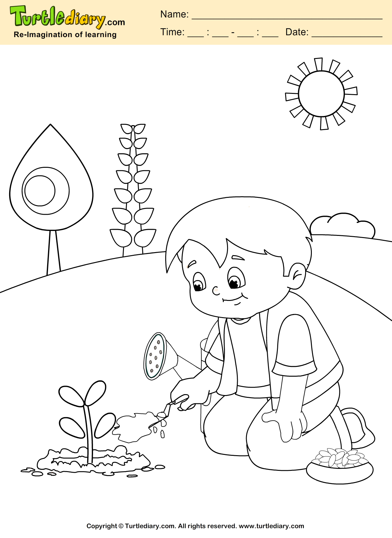 Plant Parts Coloring Worksheet