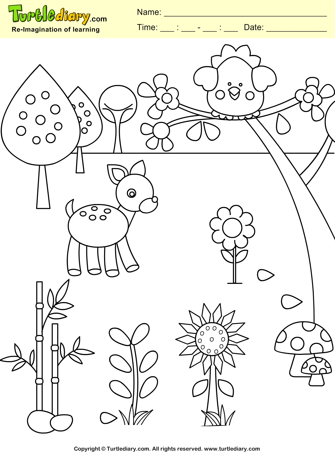 Blossom Coloring Sheet
