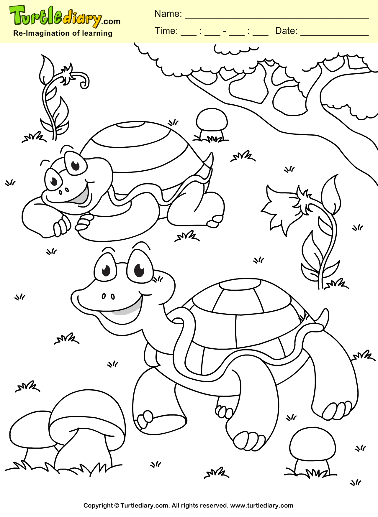 Turtle Coloring Sheet