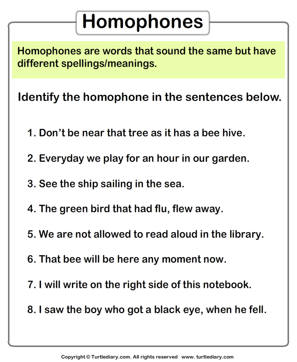 Identify Homophones In Each Sentence Worksheet