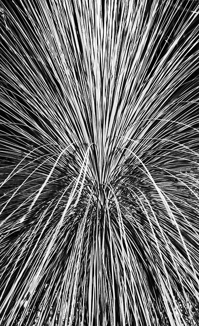 70  Stunning Abstract Photographs Photo Inspiration