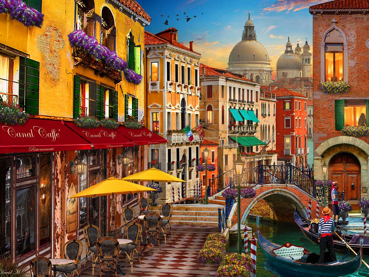 Venice Fl Farmers Market