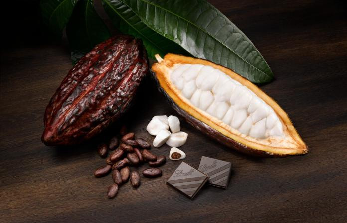 Instead of sugar, the sweetness comes from the flesh of the cocoa pod.  Is that still chocolate?