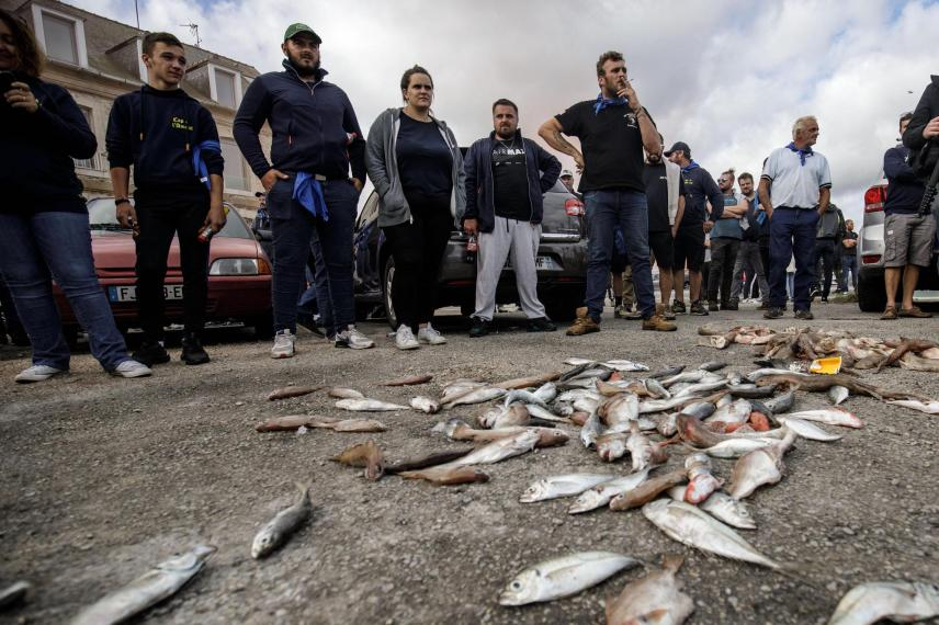 In Cherbourg, protesters threw fish in front of the entrance of the local fisheries committee.