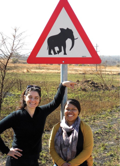 At an elephant crossing in Johannesburg with Ayanda Ngwenya, first author of study on crocodile-brain neurons, 2011.