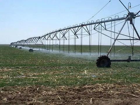 Irrigation, Kano farmers