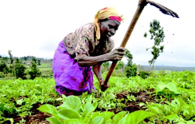 Sterling unveils agric summit for Africa