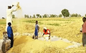Japanese govt donates 20 rice reapers,20 threshers to Nasarawa farmers