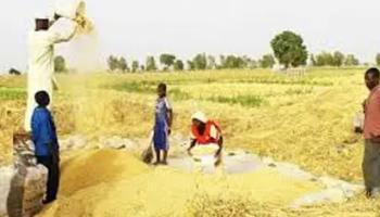 Japanese govt donates 20 rice reapers,20 threshers to Nasarawa farmers