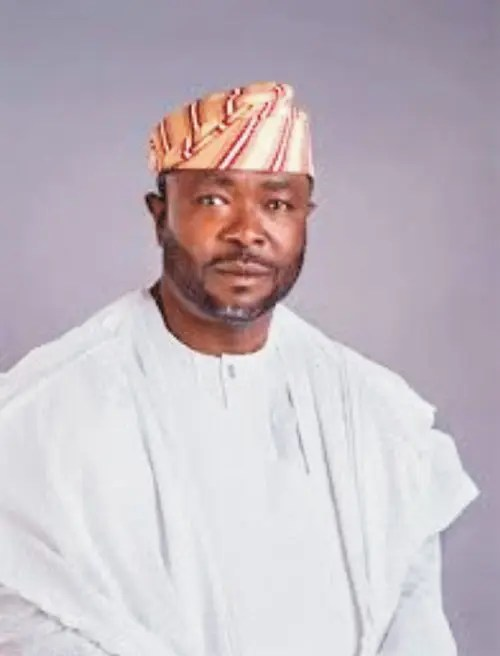 APC won't let Nigerians down — Lagos Senator - Vanguard